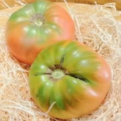 Tomate feo de Tudela ( 1 kg. Aprox)